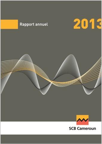 Rapport Annuel SCB Cameroun 2013